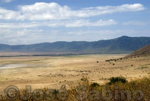 Ngorongoro-Crater-View-2-1